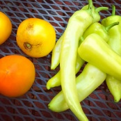 Yellow tomatoes and banana peppers from the garden
