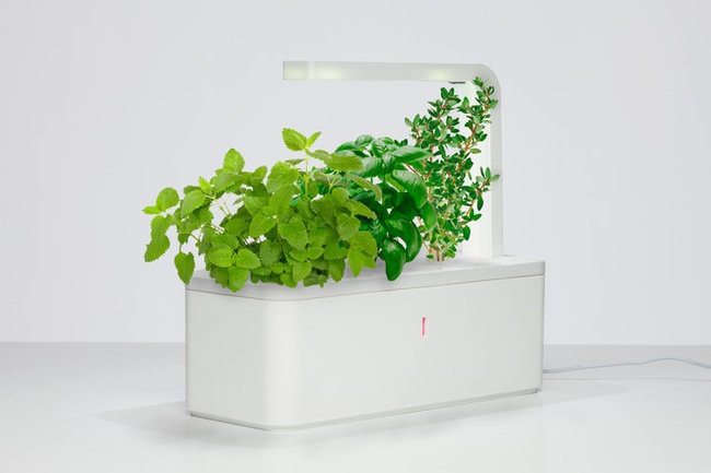 Click & Grow from SmartPot